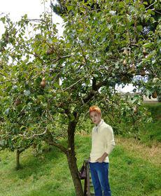 junsu-pear-tree-2