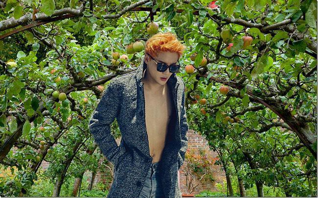 junsu-pear-tree-3