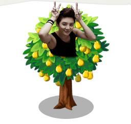 junsu-pear-tree